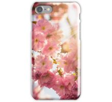 pink blossomed sakura flowers iPhone Case/Skin