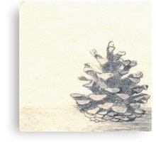 Pine cone I Canvas Print