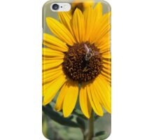 Beautiful Bee on a Sunflower iPhone Case/Skin