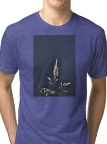 SINGLE STEM OF MEADOW GRASS SEEDS AGAINST STORMY SKY Tri-blend T-Shirt