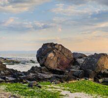 rocks and seaweed on sand coast of the sea Sticker