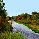 Boise River....Middleton, Idaho by Diane Arndt