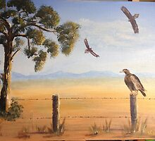Birds of Prey, Outback Australia by thatartplace