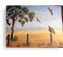 Birds of Prey, Outback Australia Canvas Print