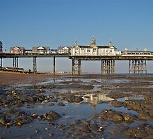 Tide's Out by John Thurgood
