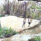 Innot Hot Springs by John Douglas
