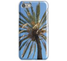 crown of a palm tree iPhone Case/Skin