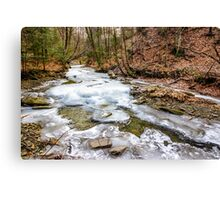 frozen river in forest Canvas Print