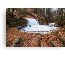 frozen waterfall in forest Canvas Print