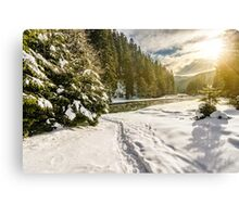 frozen river in forest at sunset Canvas Print