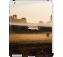 Sunrise on Bush Rd. XV iPad Case/Skin