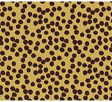 Furious Cheetah Photographic Print