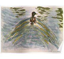 Duck on water-scroll down to view more of my work Poster