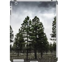 Silver Forest iPad Case/Skin