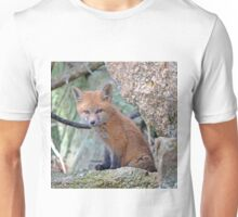 Fox Wildlife Unisex T-Shirt