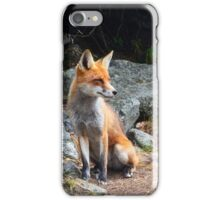 Fox Animal iPhone Case/Skin