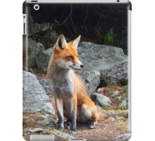 Fox Animal iPad Case/Skin
