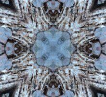 Circle 1: Grey Lichen Reflection Sticker