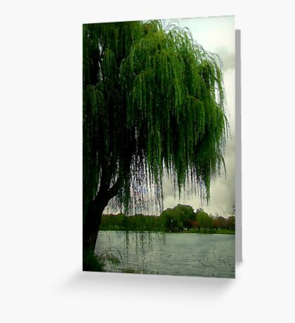 My beautiful weeping willow © Greeting Card