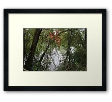 Through Silver In Blood Framed Print