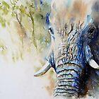 Gentle Giant by Debbie Schiff