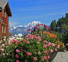 Alpine Summer Colours by RedHillDigital