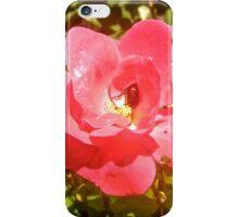 Red rose and intruder iPhone Case/Skin