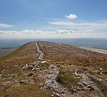 Ingleborough Walk - II by Kat Simmons