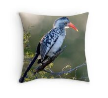 Red Billed Hornbill Throw Pillow
