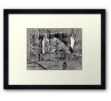 Wildcat - Impressions Framed Print