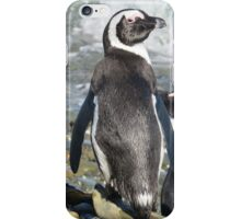 Penguins iPhone Case/Skin