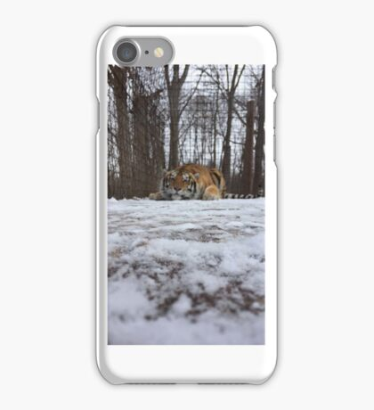 Tiger in the Snow iPhone Case/Skin