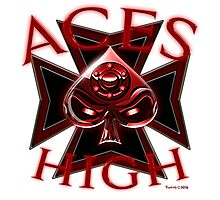 Aces High Photographic Print