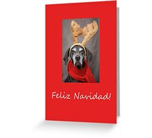 Feliz Navidad -  Spanish Christmas card Greeting Card