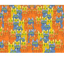 Comical Cat Crowd Photographic Print