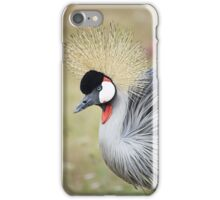 Beautiful Endangered East African Crowned Crane iPhone Case/Skin