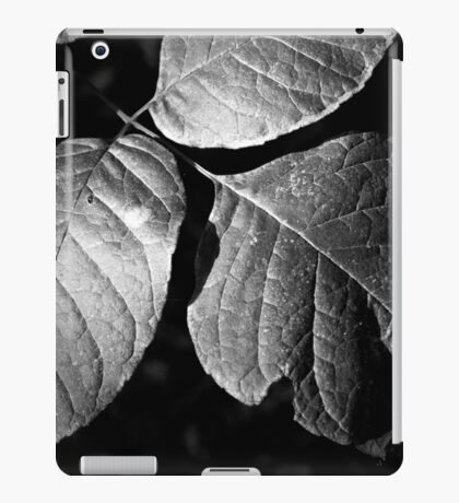 September Sundown iPad Case/Skin