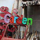 Garden Window by Peter Baglia