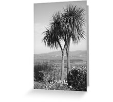 Two palm trees Greeting Card