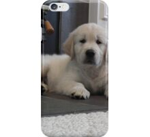 Little fluff ball iPhone Case/Skin