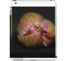 Apricot Pink Tulip in Bud iPad Case/Skin