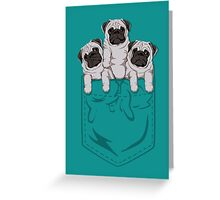 Pocket Pug Greeting Card