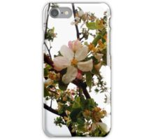 Apple Blossom iPhone Case/Skin