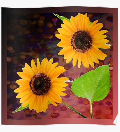 decorative sunflowers Poster