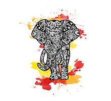 Tribal Elephant- Red Orange Photographic Print