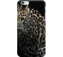 focussing the prey iPhone Case/Skin