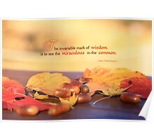 Miraculous in the Common on a Fine Autumn Day Poster