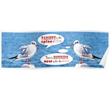 Philosophical Seagulls Variety is the Spice of Life Poster