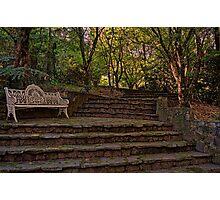 Stairway to Serenity Photographic Print