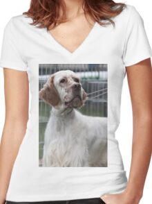 pointer dog Women's Fitted V-Neck T-Shirt